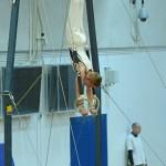 Dante Gymnastics